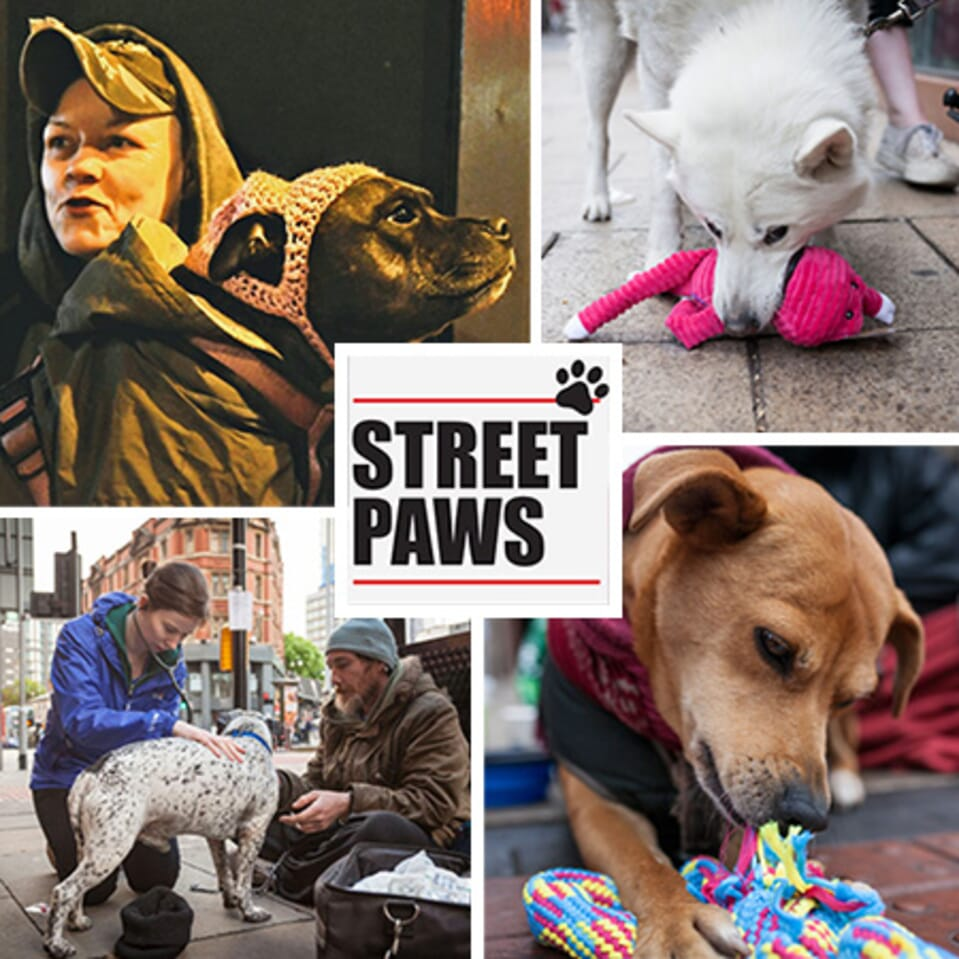 Street Paws Charity